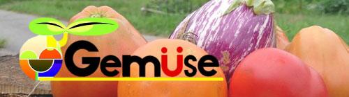 Gemüse 学生農業団体ゲミューゼ