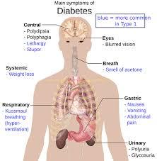images 糖尿